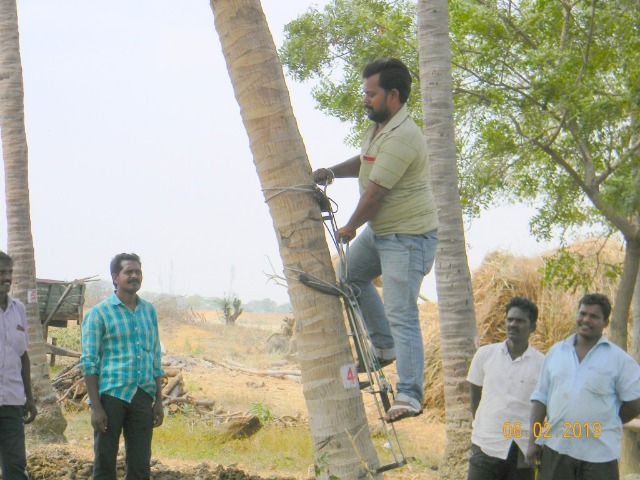 Coconut Tree climber training to Rural youth - photo - 150