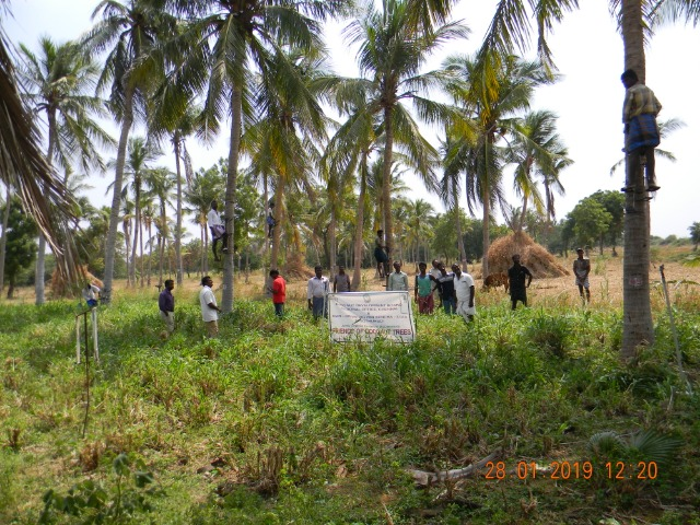 Coconut Tree climber training to Rural youth - photo - 162