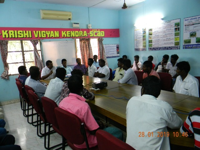 Coconut Tree climber training to Rural youth - photo - 159