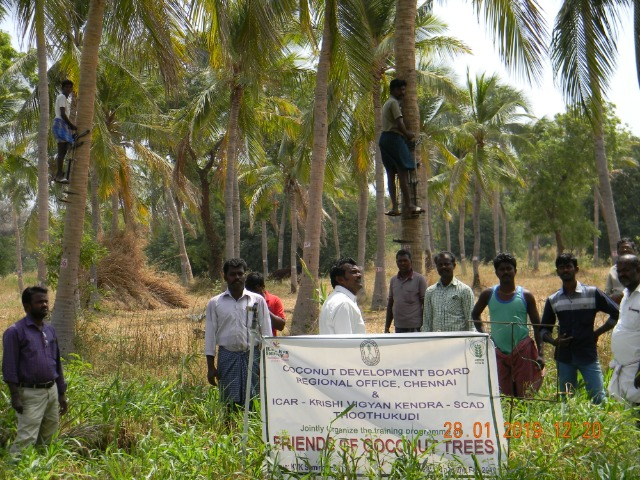 Coconut Tree climber training to Rural youth - photo - 163
