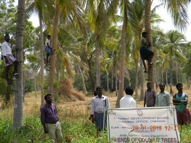 Coconut Tree climber training to Rural youth - photo - 164